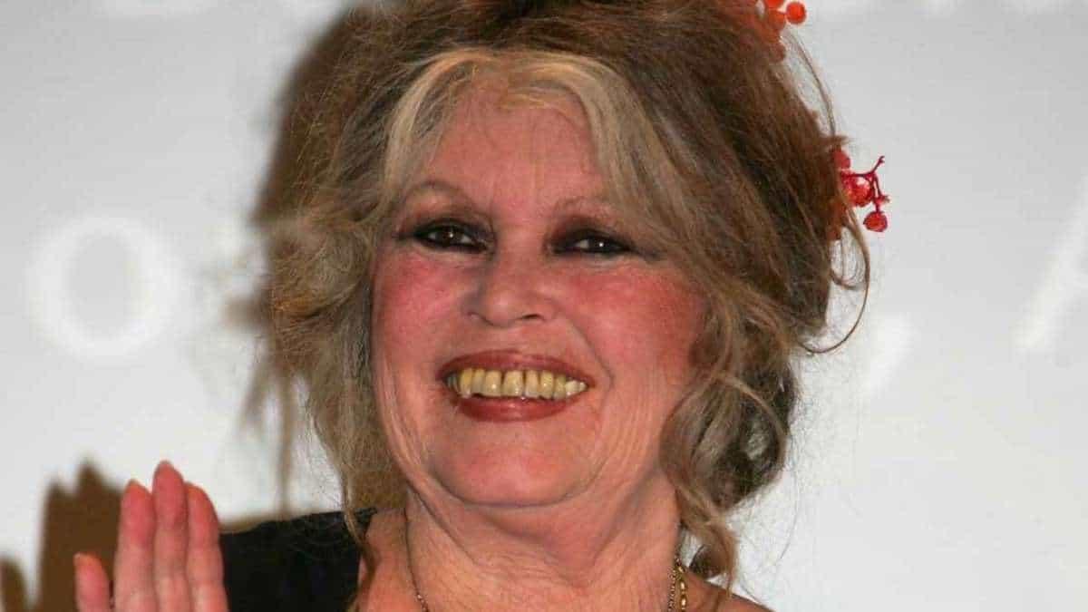 """Brigitte Bardot: Pluie d'injures! Son énorme """"coup de gueule"""" contre le gouvernement"""