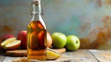 Vinaigre de cidre: Découvrez les incroyables vertus de cette boisson millénaire